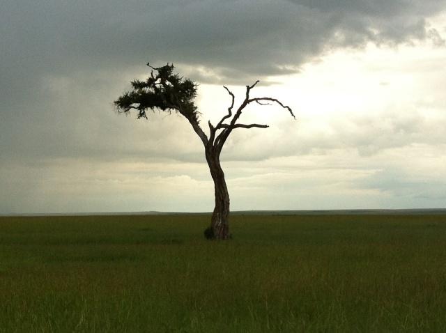 voyagenairobi-tanzanie4-www.jesuislinsolente.com